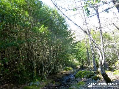 Parque Natural del Lago de Sanabria - viaje cultural;rutas fin de semana por españa